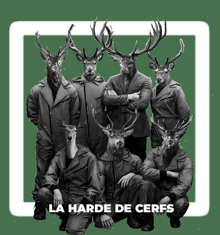 Création Site Web Jura - Cerf à Lunettes - Com & Web_la_harde